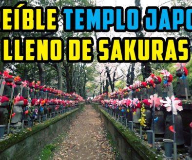 Increíble templo japonés lleno de Sakuras